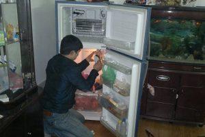 sửa chữa tủ lạnh