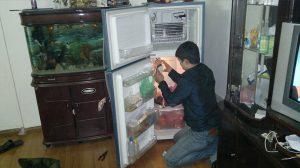 sửa tủ lạnh uy tín tại hà nội